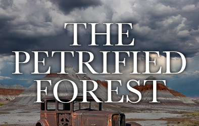 The Petrified Forest CB